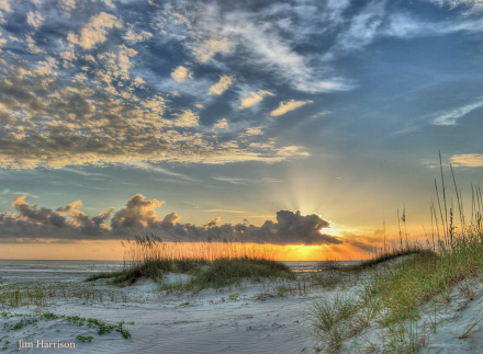 Cumberland Morning by Jim Harrison Safari Large