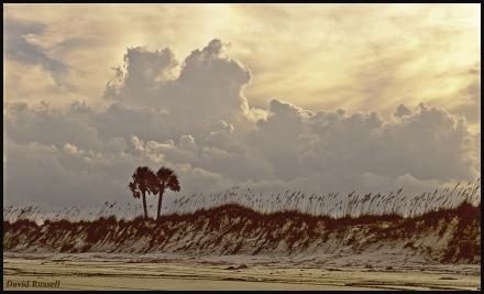 beachclouds fin
