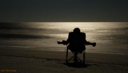 Soakin Up Moon Rays by Jim Harrison Safari Large